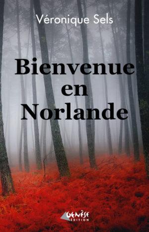 Roman Bienvenue en Norlande de Veronique Sels